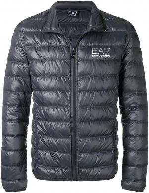 EA7 vīriešu pelēka dūnu jaka