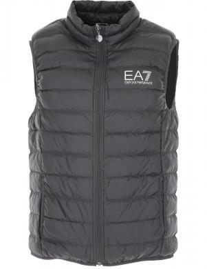 EA7 vīriešu pelēka dūnu veste