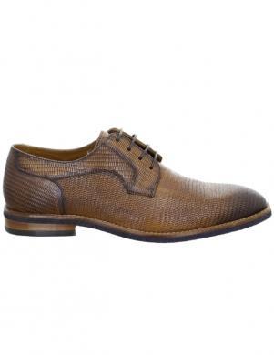 SALAMANDER vīriešu brūni klasiski apavi BOHA