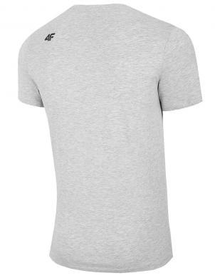 Vīriešu gaiši pelēks krekls TSM011 4F