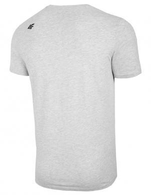 Vīriešu gaiši pelēks krekls TSM004 4F