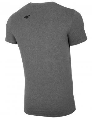 Vīriešu pelēks krekls TSM005 4F