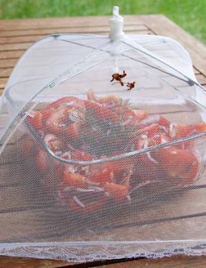 Pārtikas režģis no kukaiņiem
